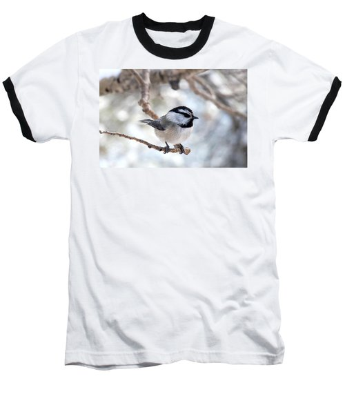 Mountain Chickadee On Branch Baseball T-Shirt by Marilyn Burton
