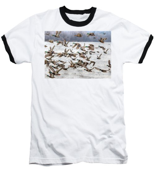 Baseball T-Shirt featuring the photograph One Direction One by Robert Pearson