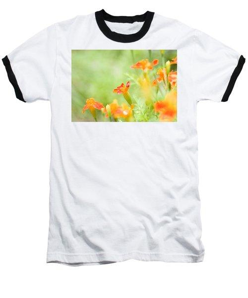 Orange Meadow Baseball T-Shirt