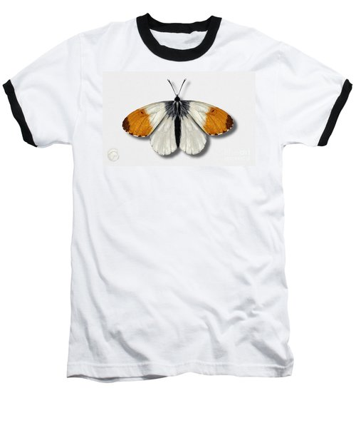 Orange Tip Butterfly - Anthocharis Cardamines Naturalistic Painting - Nettersheim Eifel Baseball T-Shirt