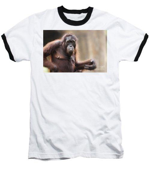 Orangutan Baseball T-Shirt by Richard Garvey-Williams