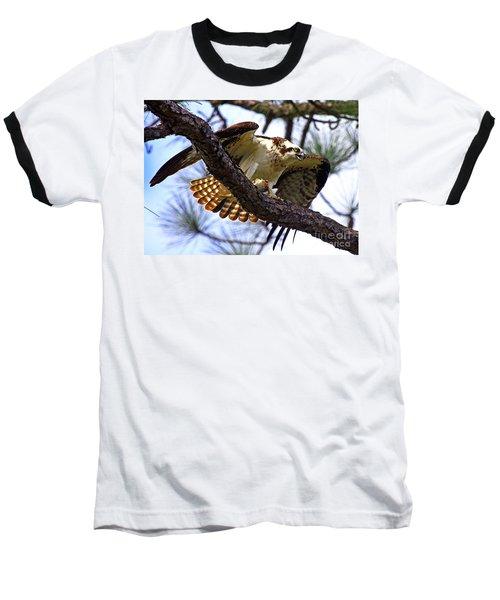 Osprey Meal Protection Baseball T-Shirt