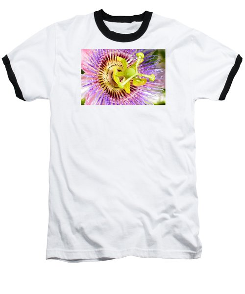 Passiflora The Passion Flower Baseball T-Shirt by Olga Hamilton