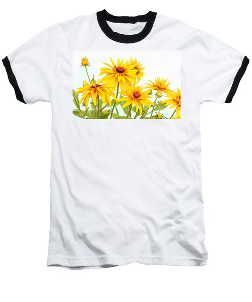 Patch Of Black-eyed Susan Baseball T-Shirt