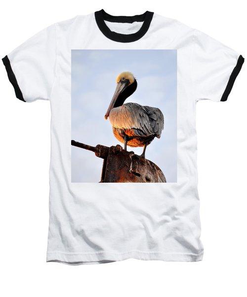 Pelican Looking Back Baseball T-Shirt