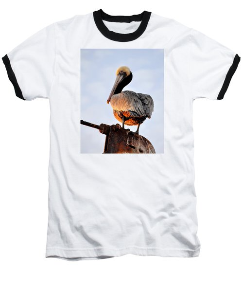 Pelican Looking Back Baseball T-Shirt