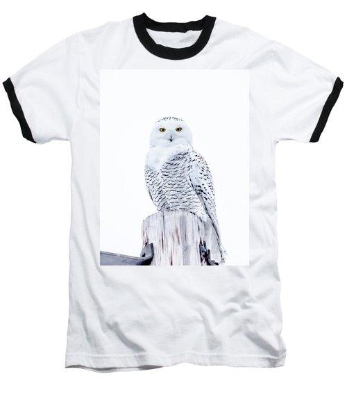 Penetrating Stare Baseball T-Shirt