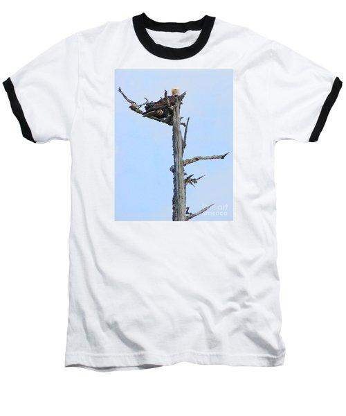 Perched Eagle Baseball T-Shirt