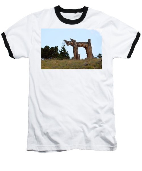 Pi In The Sky Baseball T-Shirt