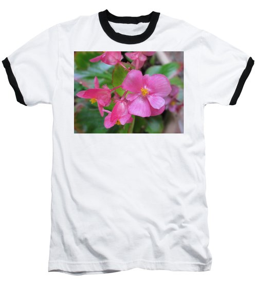 Pink Begonias Baseball T-Shirt