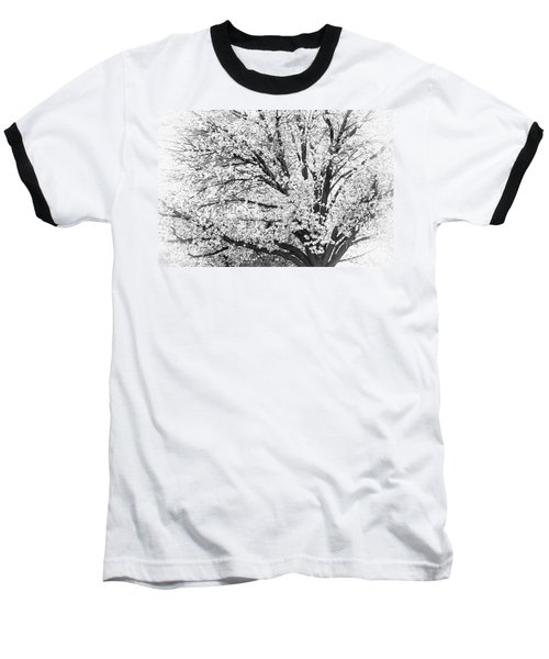 Baseball T-Shirt featuring the photograph Poetry Tree by Roselynne Broussard