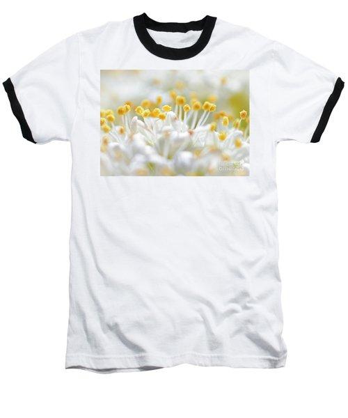 Pollen Baseball T-Shirt