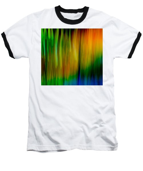 Primary Rainbow Baseball T-Shirt by Darryl Dalton