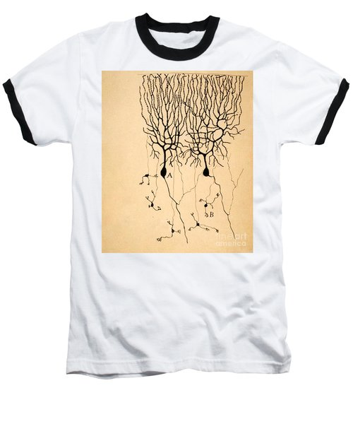 Purkinje Cells By Cajal 1899 Baseball T-Shirt