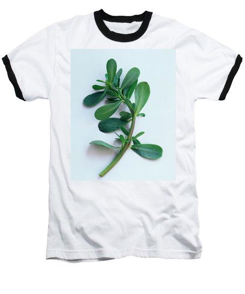 Purslane Baseball T-Shirt
