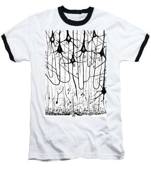 Pyramidal Cells Illustrated By Cajal Baseball T-Shirt