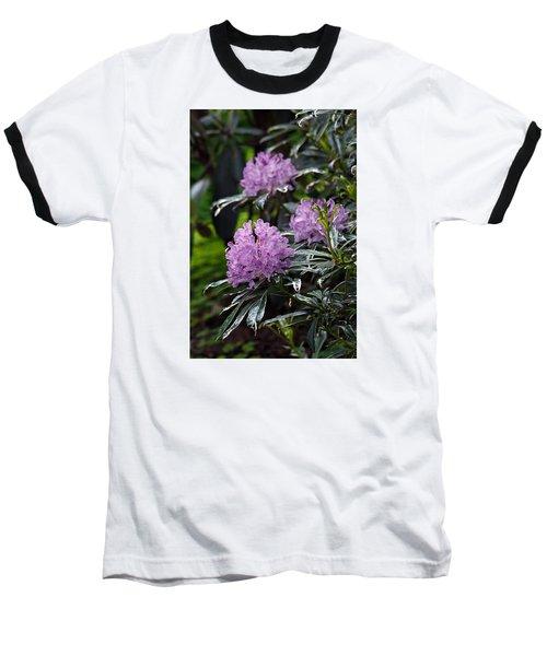 R. Ponticum Variegatum Baseball T-Shirt