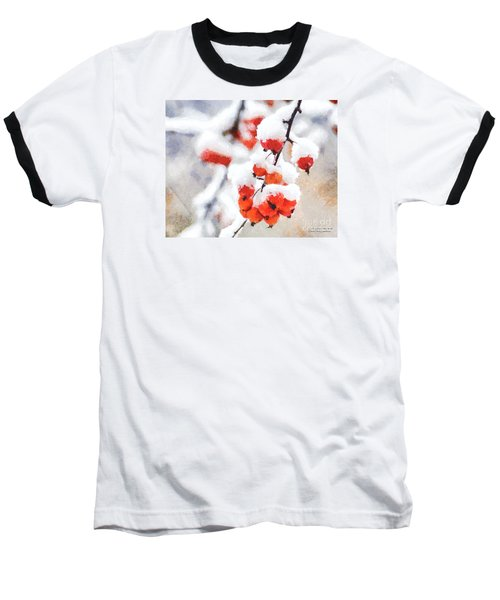 Red Crabapples In The Winter Snow - A Digital Painting By D Perry Lawrence Baseball T-Shirt by David Perry Lawrence