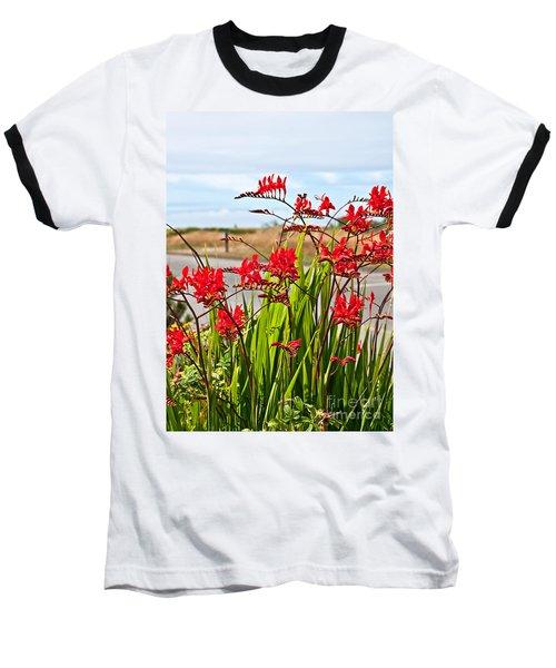 Red Flowers Crocosmia Lucifer Montbretia Plant Art Prints Baseball T-Shirt by Valerie Garner