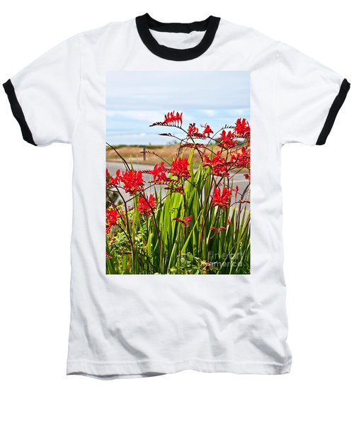 Red Flowers Crocosmia Lucifer Montbretia Plant Art Prints Baseball T-Shirt