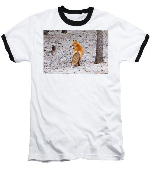 Red Fox Egg Thief Baseball T-Shirt
