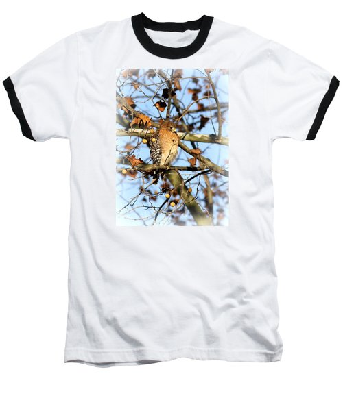Red-shouldered Hawk - Img_7943 Baseball T-Shirt by Travis Truelove