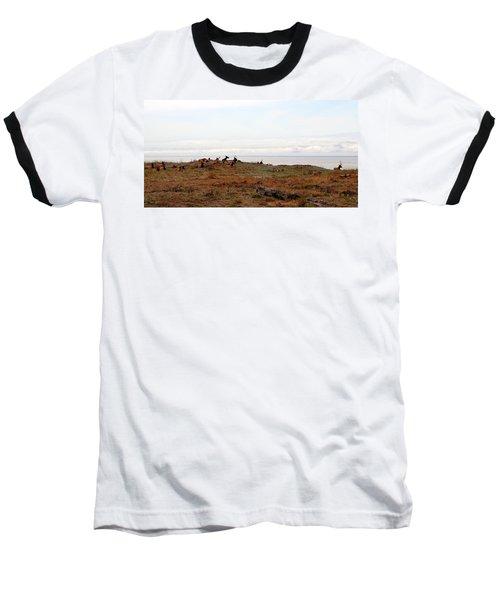 Roosevelt Elk And The Ocean Baseball T-Shirt