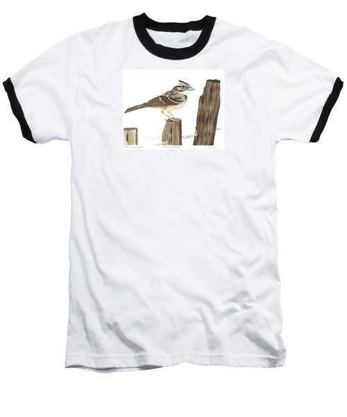 Rufous-collared Sparrow Baseball T-Shirt by Cindy Hitchcock