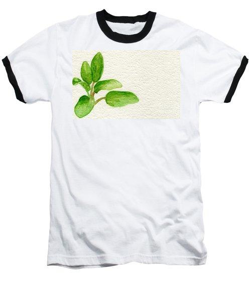 Sage Baseball T-Shirt by Annemeet Hasidi- van der Leij