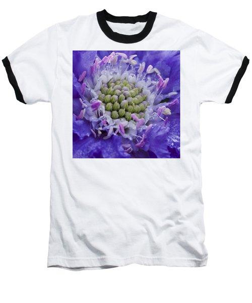 Scabiosa Baseball T-Shirt