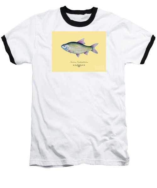 Scardinius Erythrophthalmus Baseball T-Shirt