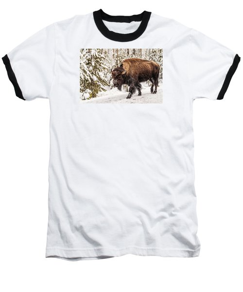 Scary Bison Baseball T-Shirt by Sue Smith