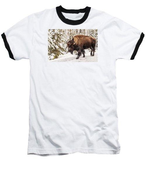 Scary Bison Baseball T-Shirt