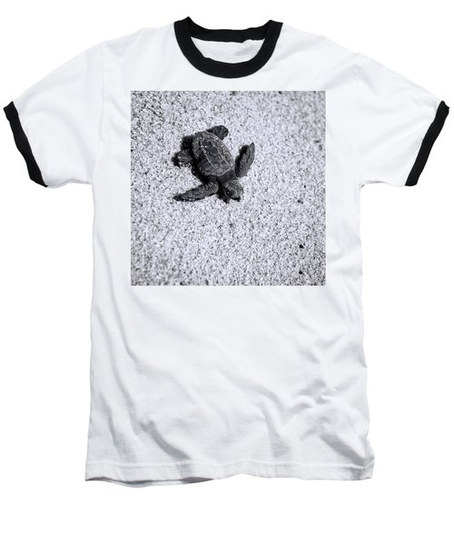 Sea Turtle In Black And White Baseball T-Shirt by Sebastian Musial