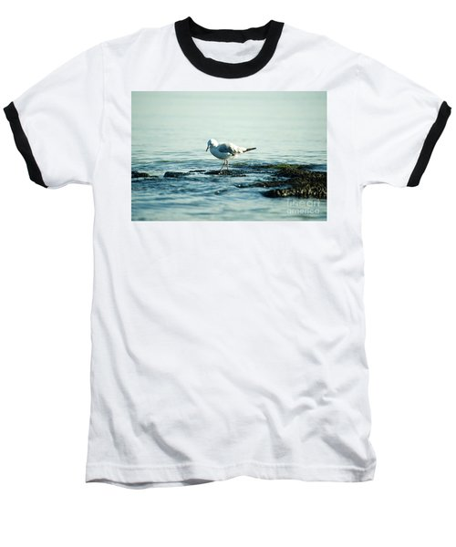 Baseball T-Shirt featuring the photograph Seagull Hunting by Yew Kwang