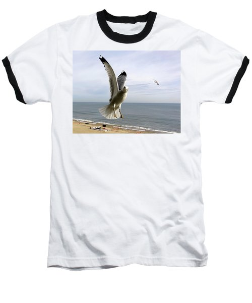 Inquisitive Seagull Baseball T-Shirt