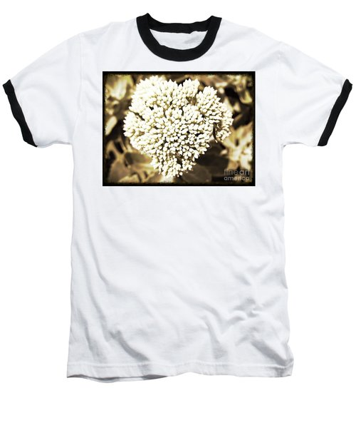 Baseball T-Shirt featuring the painting Sedum In The Heart by Kimberlee Baxter