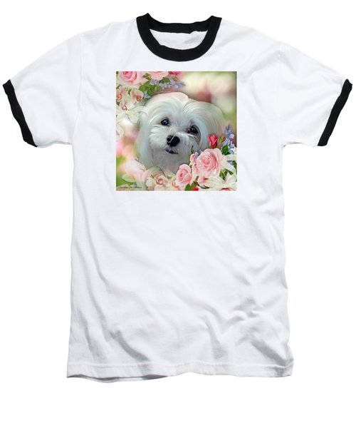 Baseball T-Shirt featuring the photograph Snowdrop The Maltese by Morag Bates