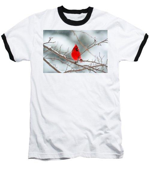 Snowy Cardinal Baseball T-Shirt