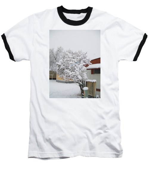 Snowy Lilac Baseball T-Shirt by Jewel Hengen