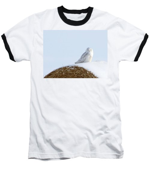 Baseball T-Shirt featuring the photograph Snowy Owl by Alyce Taylor
