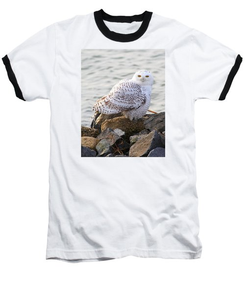 Snowy Owl In New Jersey Baseball T-Shirt