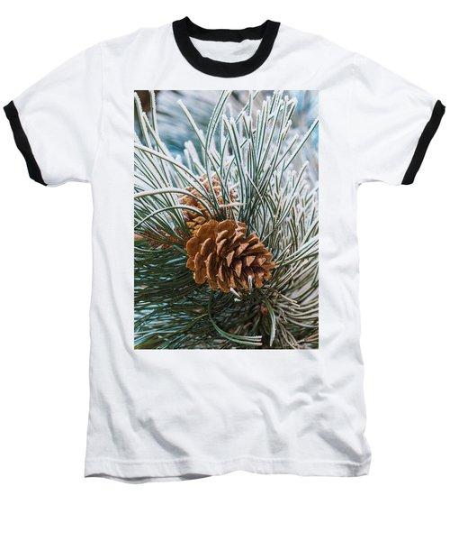Snowy Pine Cones Baseball T-Shirt