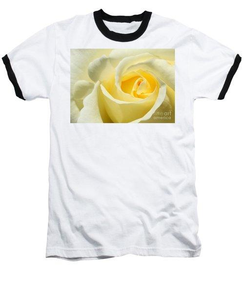 Soft Yellow Rose Baseball T-Shirt