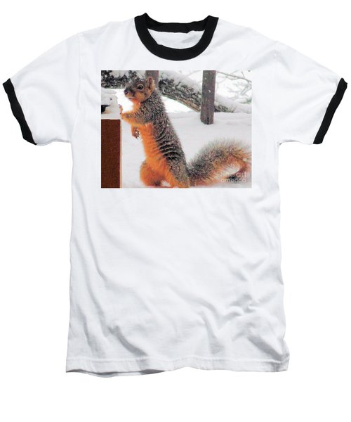 Baseball T-Shirt featuring the photograph Squirrel Checking Out Seeds by Janette Boyd
