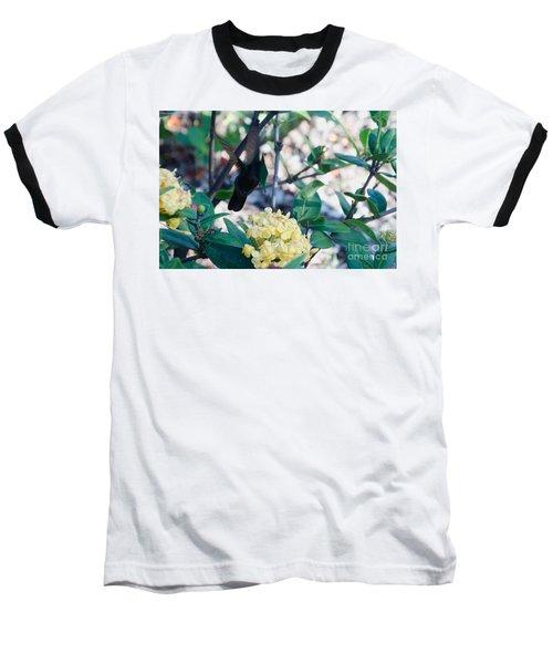St. Lucian Hummingbird Baseball T-Shirt