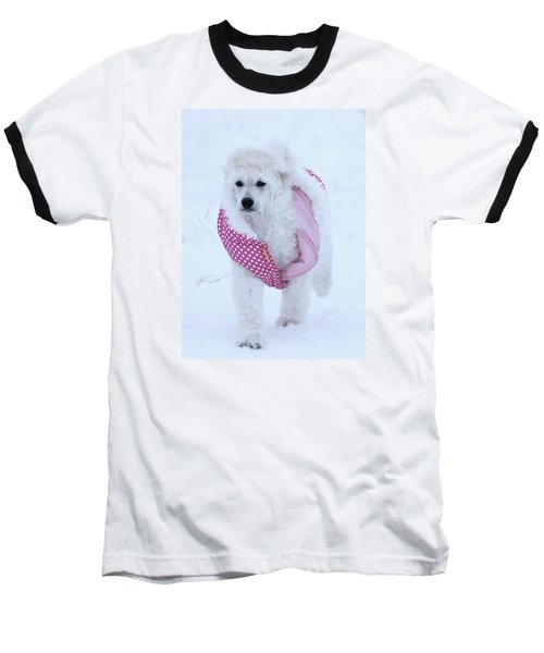 Standard Poodle In Winter Baseball T-Shirt