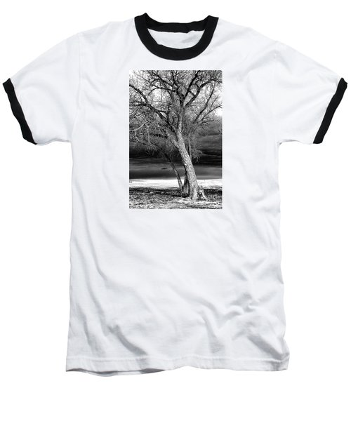 Storm Tree Baseball T-Shirt by Steven Reed
