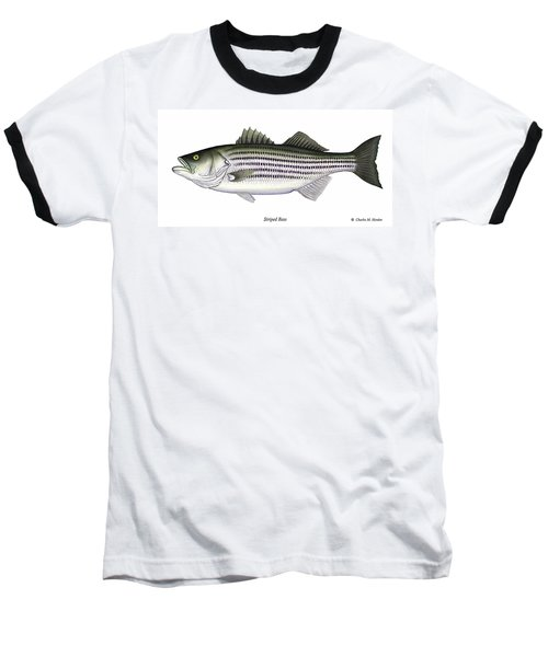 Striped Bass Baseball T-Shirt by Charles Harden