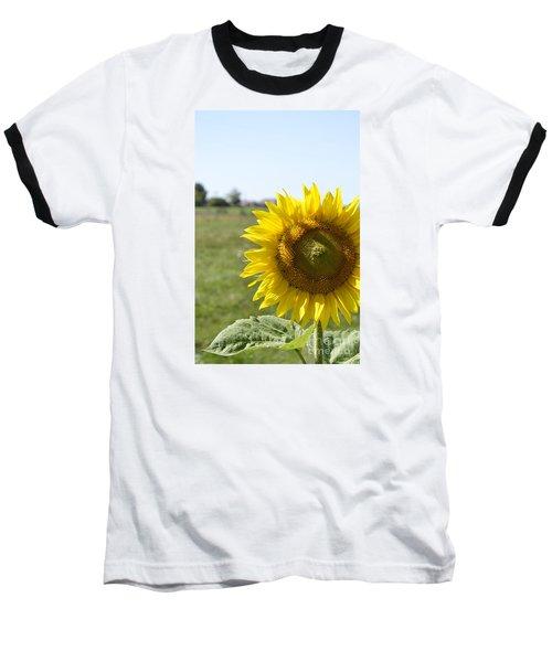 Summer Lovin Baseball T-Shirt by Traci Cottingham